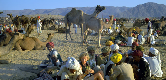 Pushkar cattle fair with Tour Guide & Driver